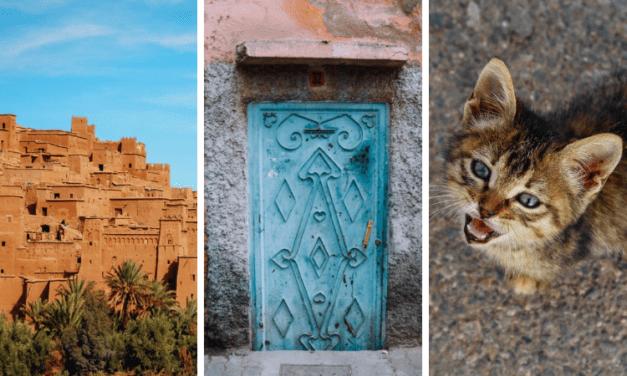 Чем заняться в городе Марракеш, Марокко